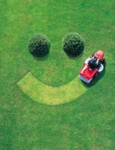 A well kept lawn is a happy lawn.